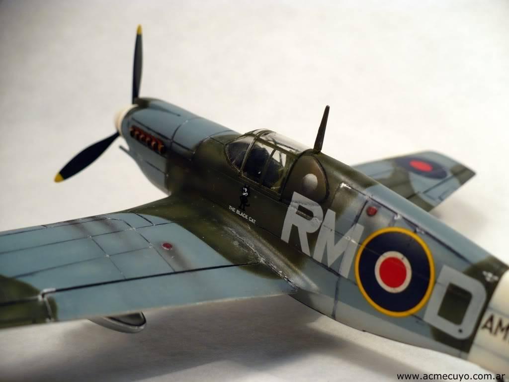 "1/72 Mustang P-51 I ""Razorback"" Acmecuyo-Mustang-P51B-ErnestoGre-13"