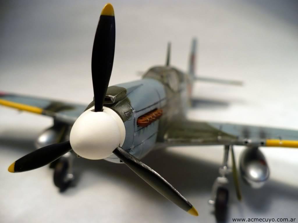 "1/72 Mustang P-51 I ""Razorback"" Acmecuyo-Mustang-P51B-ErnestoGre-24"