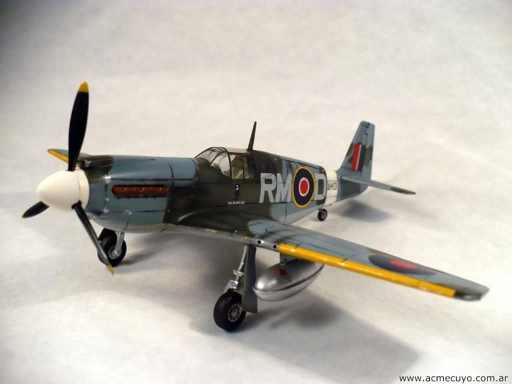 "1/72 Mustang P-51 I ""Razorback"" Acmecuyo-Mustang-P51B-ErnestoGre-26"