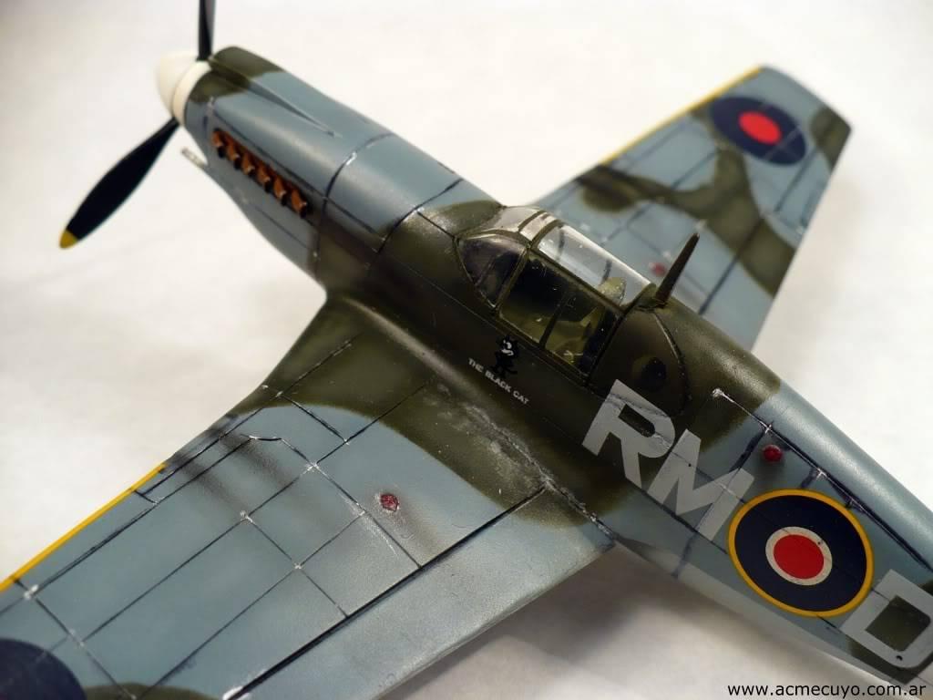 "1/72 Mustang P-51 I ""Razorback"" Acmecuyo-Mustang-P51B-ErnestoGre-3"