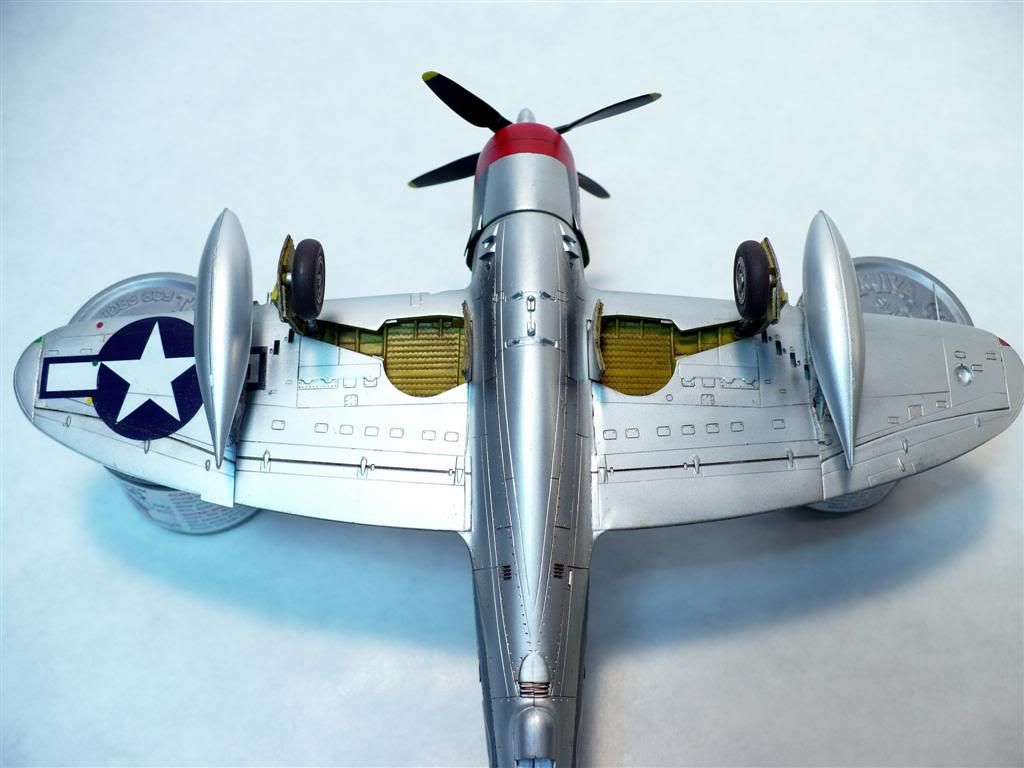 1/72 P-47M Thunderbolt - Capt.Witold Lanowski P1020730Large