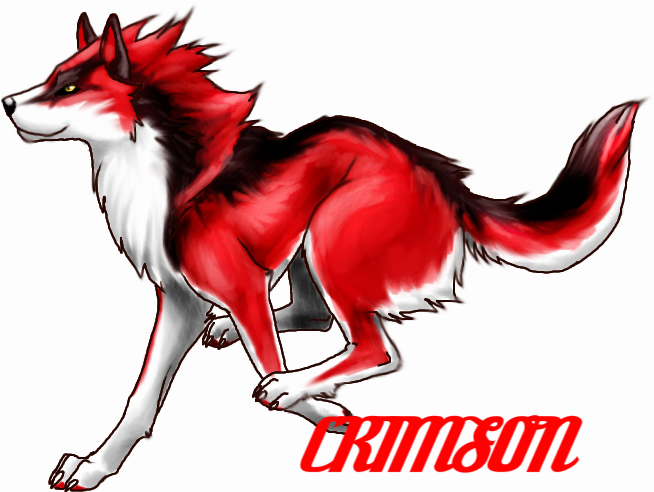 The Nahimana Wolf Pack ((RESTARTED)) Running_wolf_designn_by_TheTyro-1