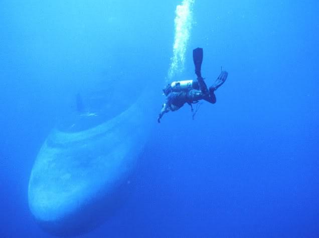 sous marins dans le monde NavySEAL52