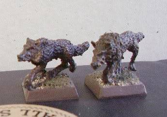 Undead warband Direwolves