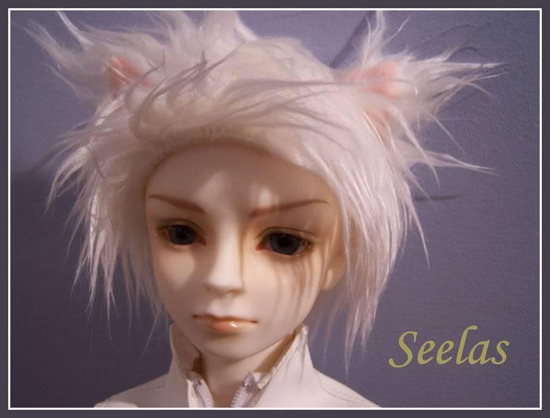 [ VOLKS ] Chris Seelas_Database