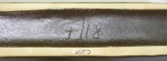 Silberdistel 100_7658
