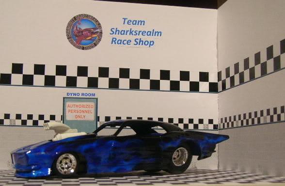 Shark's Realm Team Camaro DSCN3636