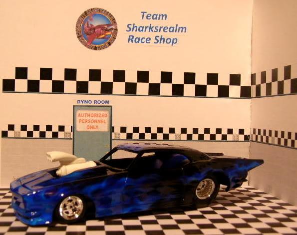 Shark's Realm Team Camaro DSCN3639