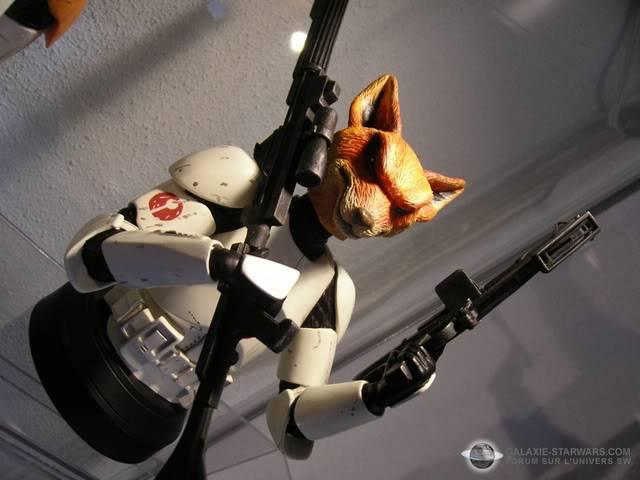 Les aventures de Fox Trooper ! Photo1491copia