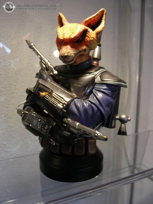 Les aventures de Fox Trooper ! Photo1495copia