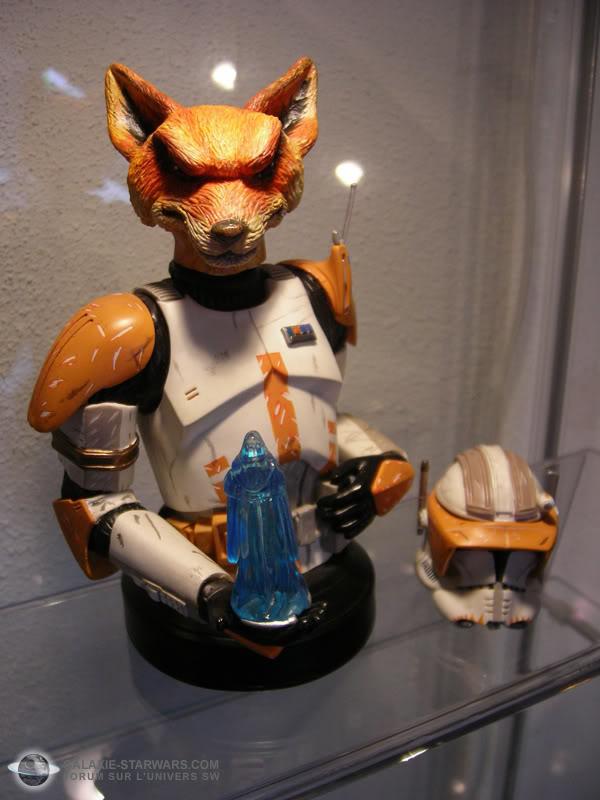 Les aventures de Fox Trooper ! Photo1501copia