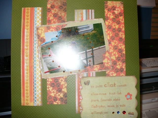 Mes cartes et pages faites cette été :) 2009-11-04506