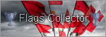 Hello BLS:) FlagsCollector