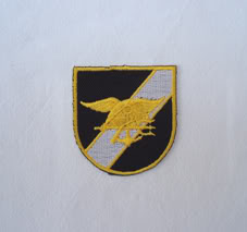 My Navy SEAL patch collection Seal_flash_1