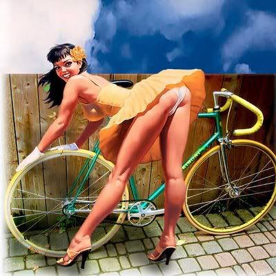 my bike - Page 2 BikeSkirt