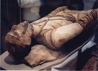 The Mummies Mummy1111