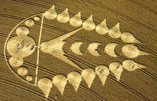 The Crop Circles Pic49July