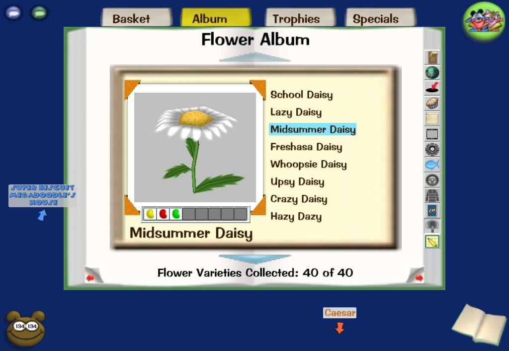 3 bean flower combinations Screenshot-Wed-Dec-10-23-45-56-2008