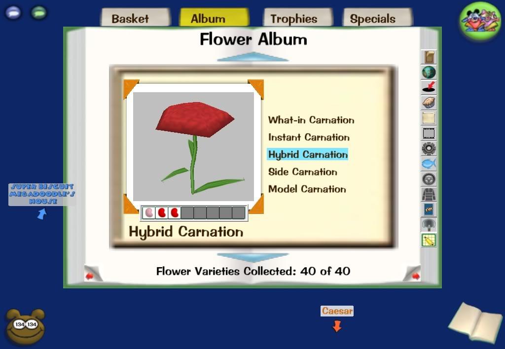 3 bean flower combinations Screenshot-Wed-Dec-10-23-46-01-2008