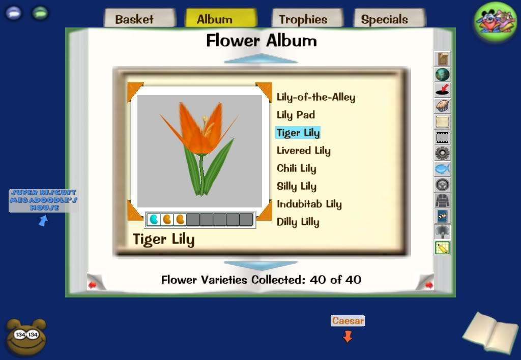 3 bean flower combinations Screenshot-Wed-Dec-10-23-46-05-2008