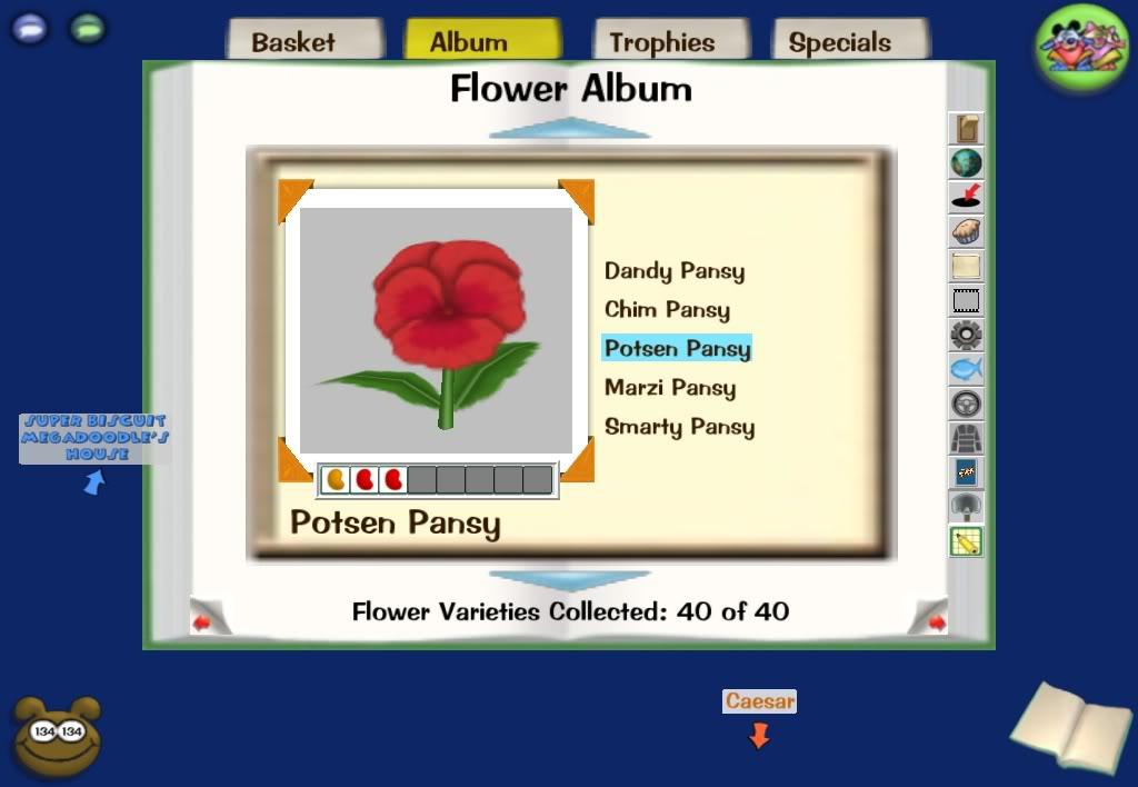 3 bean flower combinations Screenshot-Wed-Dec-10-23-46-12-2008