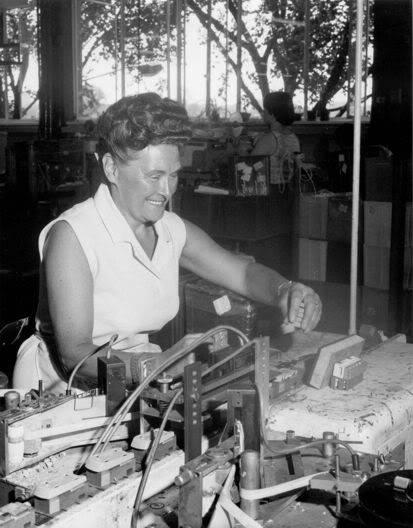 LESNEY LOS PRIMEROS AÑOS UN POCO DE HISTORIA FactoryLadys