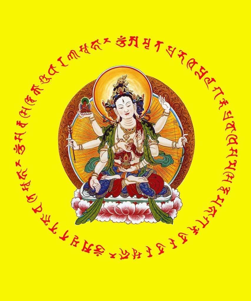 Maha Vaipulya Mahasamnipata Bhadrapala Bodhisattva Parivarta Nama Mahayana Sutra FB_IMG_1455979909659