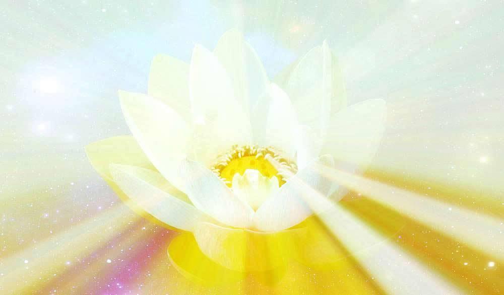 Maha Vaipulya Mahasamnipata Bhadrapala Bodhisattva Parivarta Nama Mahayana Sutra Rasmi%20Padma