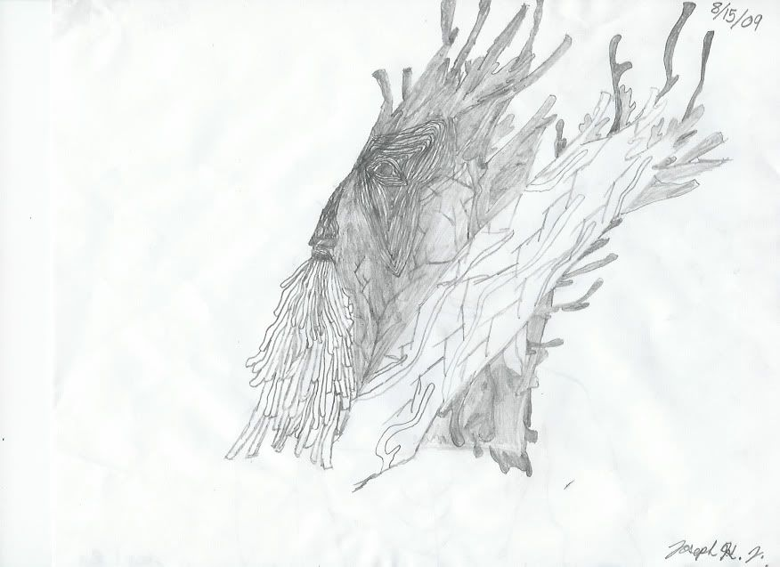 Another pic, treebeard again... Treebeardjojo