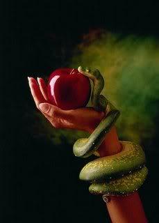 Mansão Smith - Página 3 Serpente5