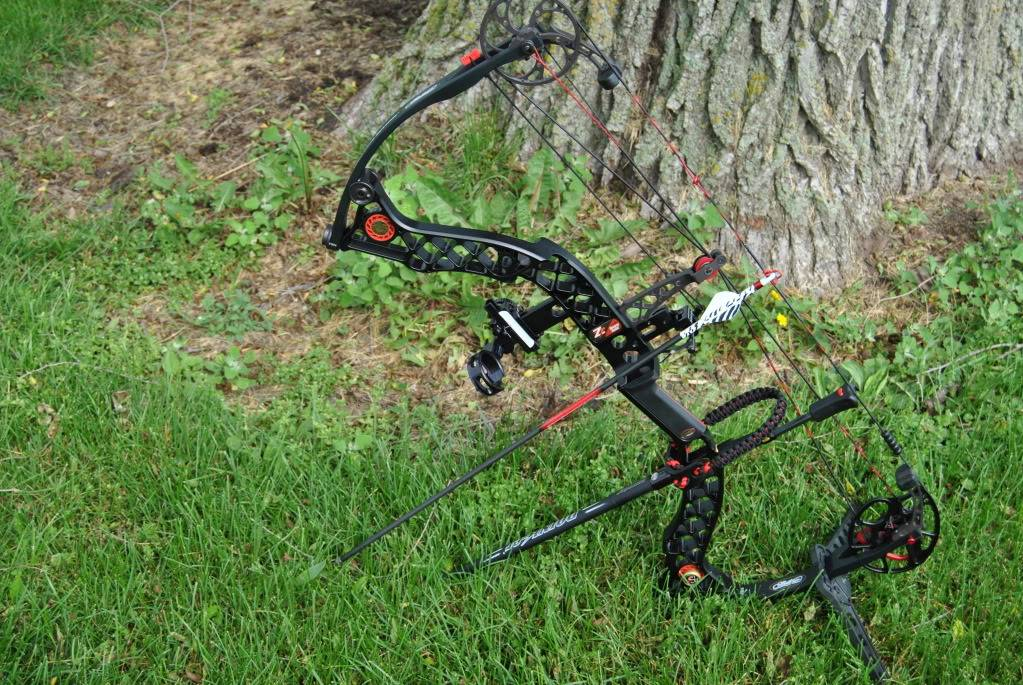 Need Bow Work?...  Check it out! 006-3