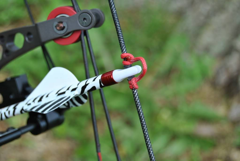 Need Bow Work?...  Check it out! 011-3