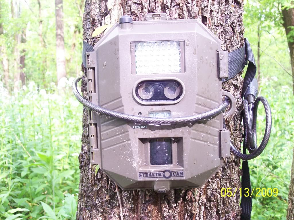 Product Review: Stealth Cam Prowler Trailcamcloseup