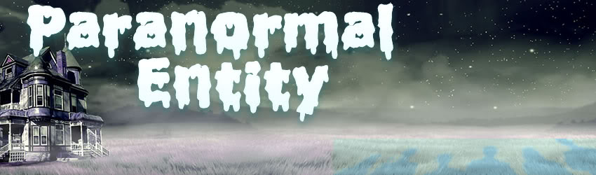 Paranormal Entity Banner2