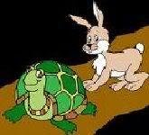 """Tân """" Thỏ và Rùa"""" và tầm quan trọng của làm việc theo nhóm ! Thovarua3"""