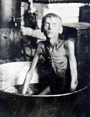 Holodomor , ¿que es ficcion y que realidad? - Página 2 13