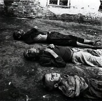 Holodomor , ¿que es ficcion y que realidad? - Página 2 15