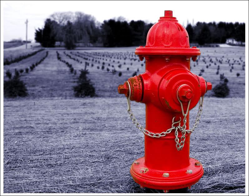 Volim crveno - Page 5 Fire-hydrant02