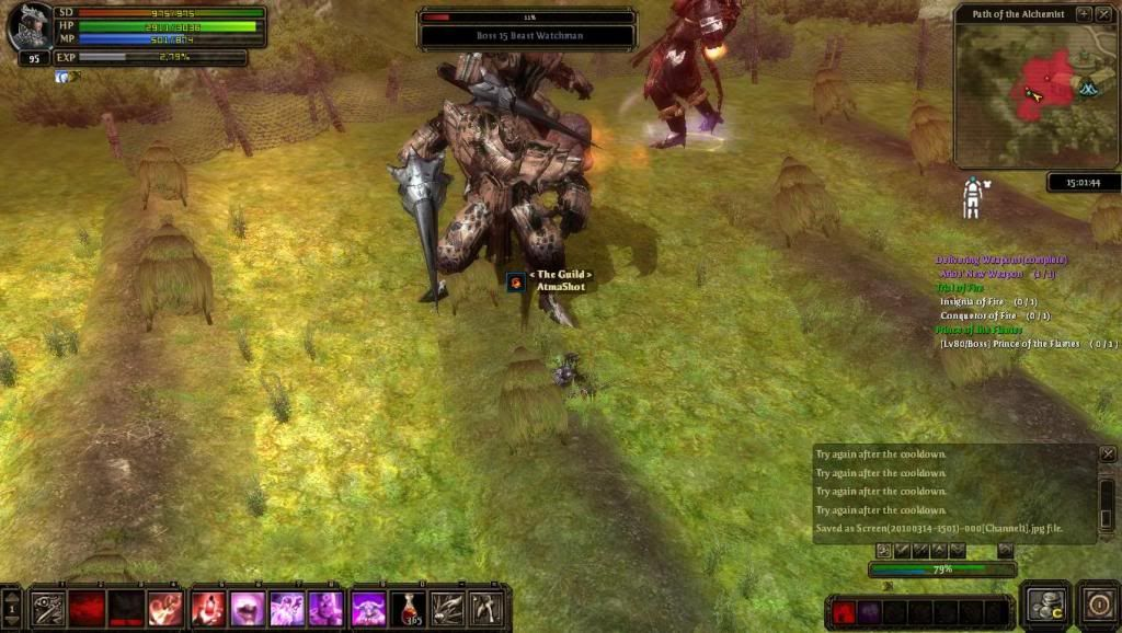 Me soloing FoB bosses Screen20100314-1501-000Channel1