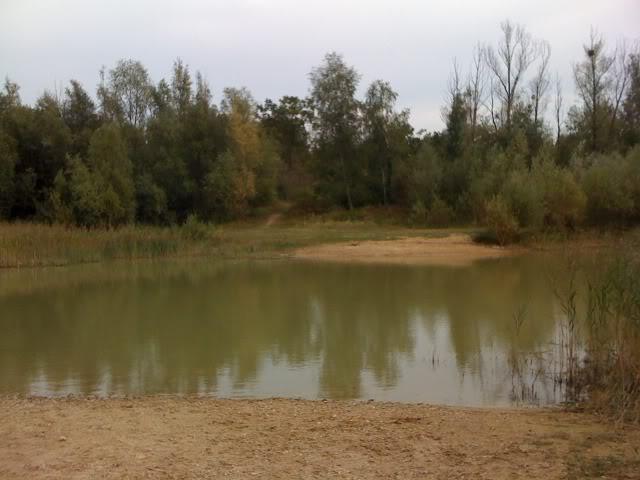 Comment pêcher à cet endroit ? IMG_0415
