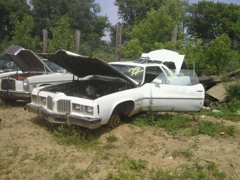 Junk yard trip Photo0086