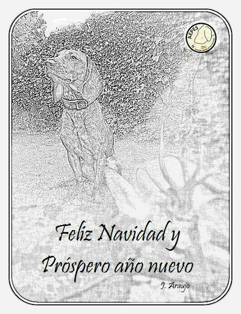 Feliz Navidad para todos FelicitacionAEPES2013_zps2e834363