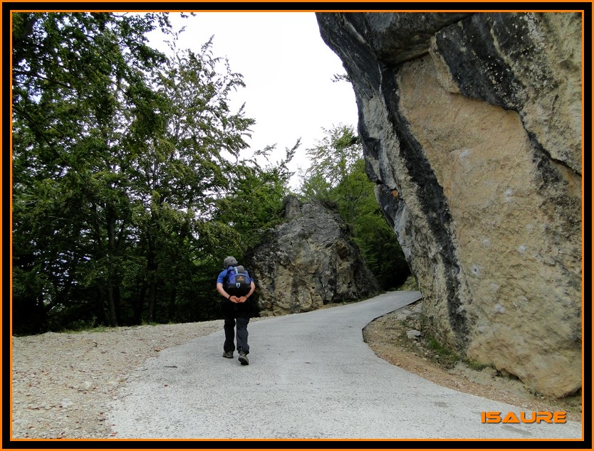 Bosque de Artea y Cueva de los Cristinos (Urbasa) DSC02596