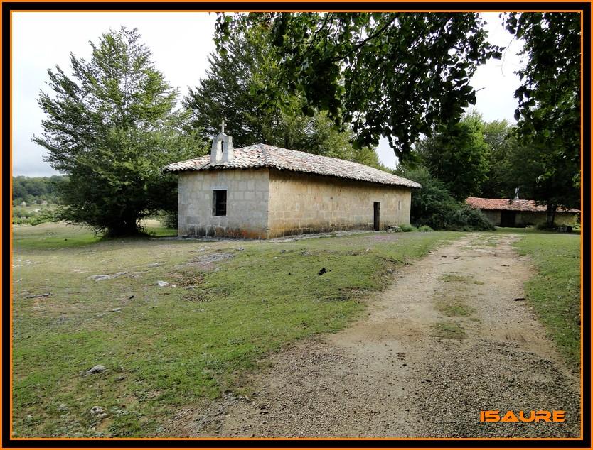 Bosque de Artea y Cueva de los Cristinos (Urbasa) DSC02599