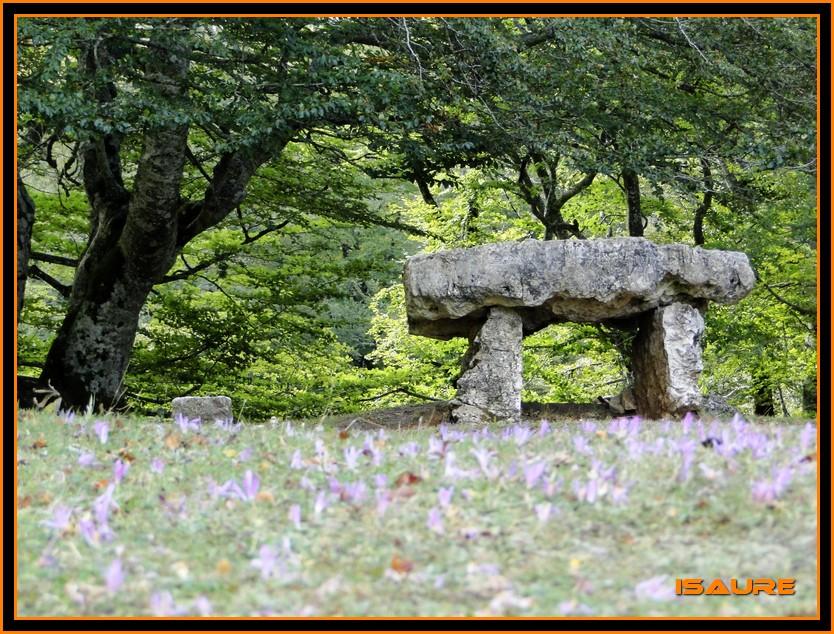 Bosque de Artea y Cueva de los Cristinos (Urbasa) DSC02601