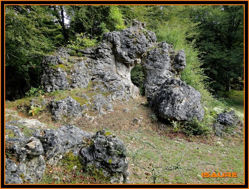 Bosque de Artea y Cueva de los Cristinos (Urbasa) DSC02603