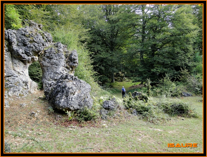 Bosque de Artea y Cueva de los Cristinos (Urbasa) DSC02604