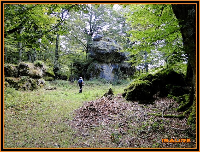 Bosque de Artea y Cueva de los Cristinos (Urbasa) DSC02605