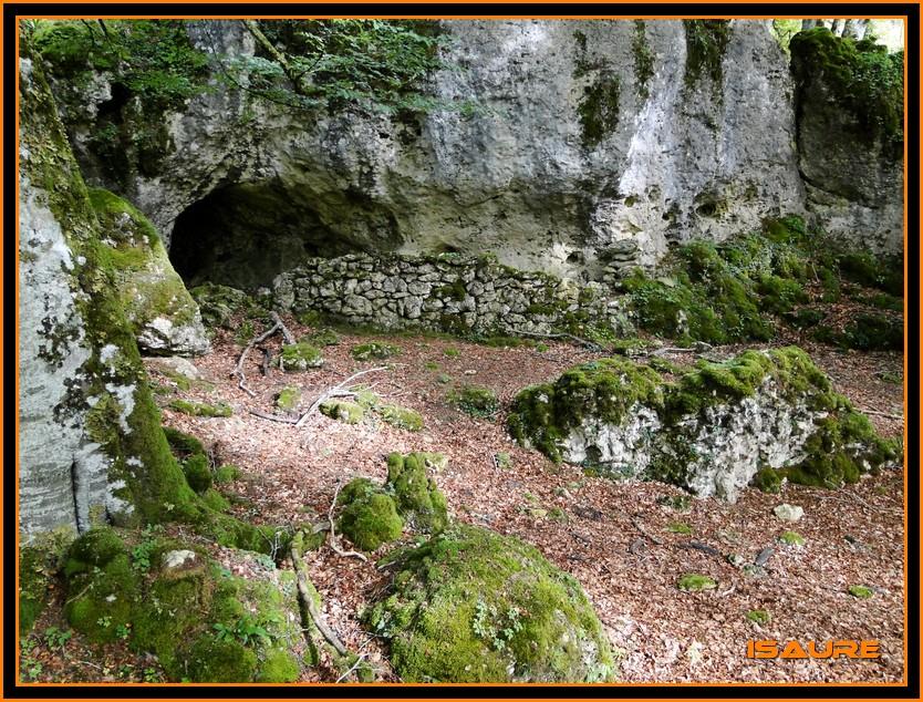 Bosque de Artea y Cueva de los Cristinos (Urbasa) DSC02608