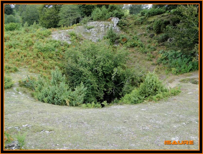 Bosque de Artea y Cueva de los Cristinos (Urbasa) DSC02631